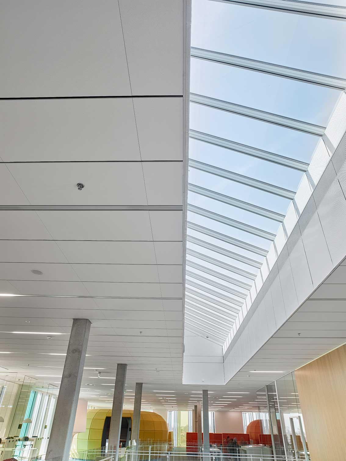 Matric Recessed Frameless F3 indbygget i loftet i det åbne undervisningsmiljø - Luminex
