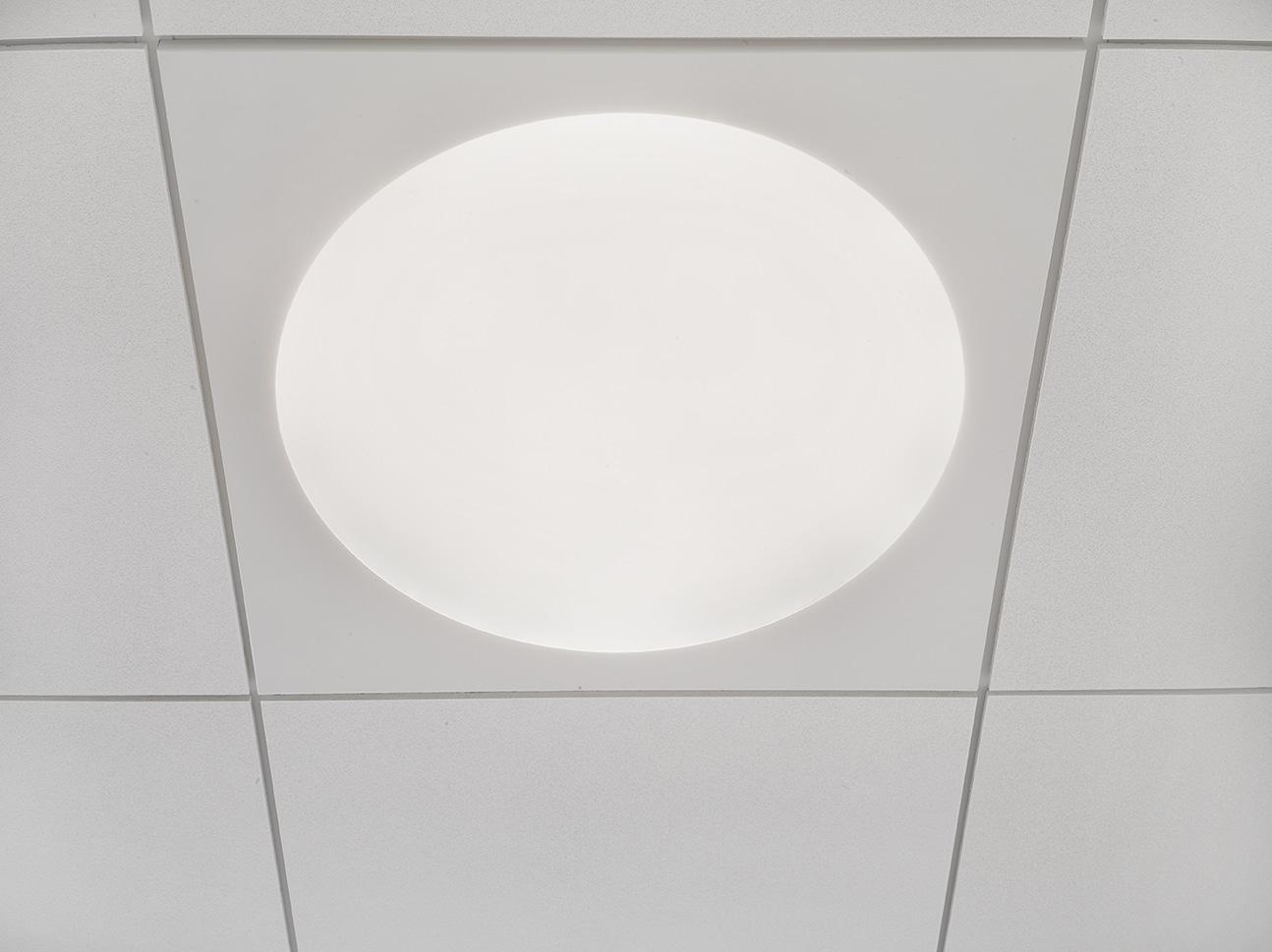 Ledgo circle panel lampe monteret i gips loft hos Odense Katedralskole nærbillede - Luminex