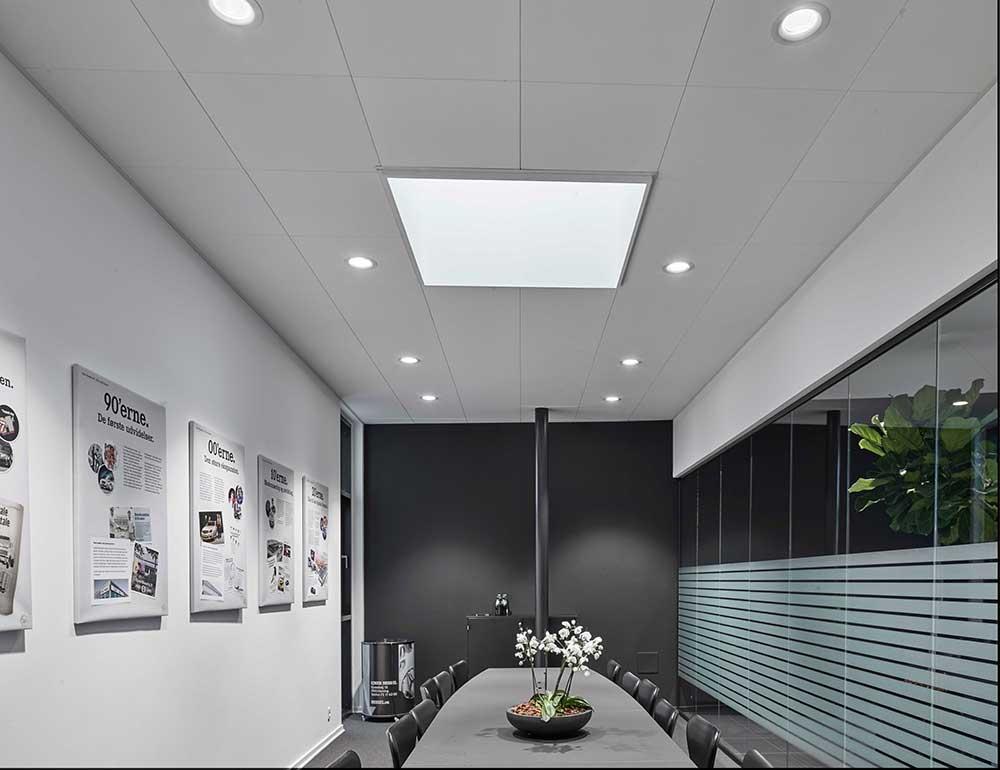 Linea DS-F 150 spotlight indbygget i loftet i møderum hos bilhus - Luminex
